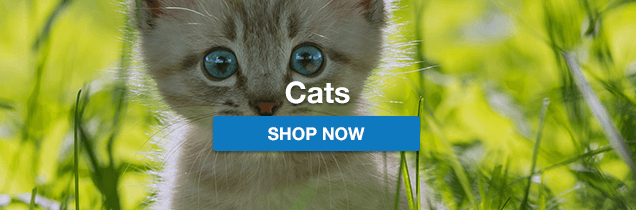 Online Pet Store | Pet Products & Accessories | Dogs, Cats
