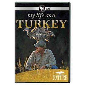 Nature:My Life As a Turkey - (Region 1 Import DVD)