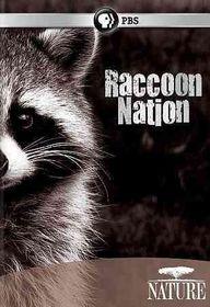 Nature:Raccoon Nation - (Region 1 Import DVD)