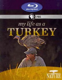 Nature:My Life As a Turkey - (Region A Import Blu-ray Disc)