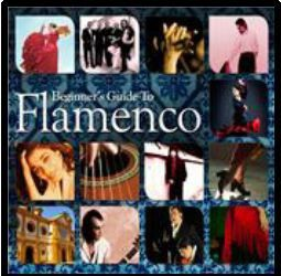 Beginner's Guide To - Beginner's Guide To Flamenco - Vol.2 (CD)