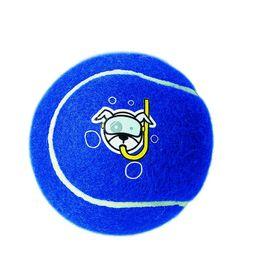 Rogz - Dog Molecule Proton Ball - Large 10cm - Blue