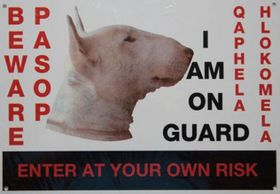 Marltons - Beware Of The Dog Sign - Bull Terrier
