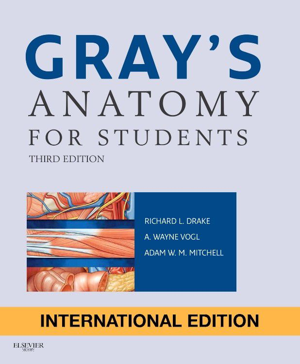 Gray\'s Anatomy For Students | Buy Online in South Africa | takealot.com