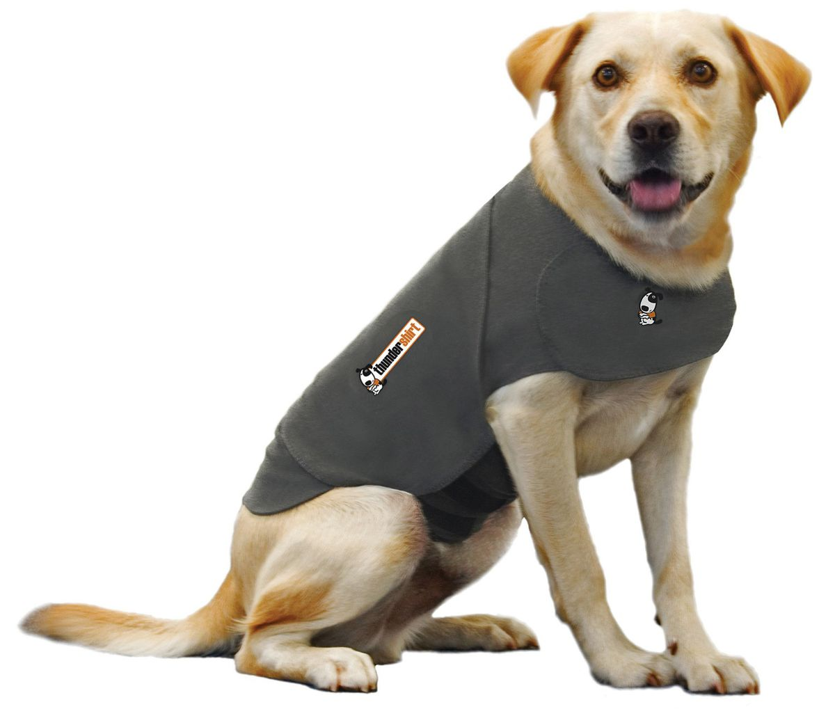 Thundershirt - Same Day Shipping at BaxterBooTypes: Coats, Sweaters, Bowls.