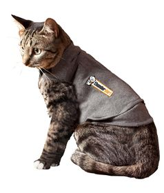 ThunderShirt - For Cats - Grey