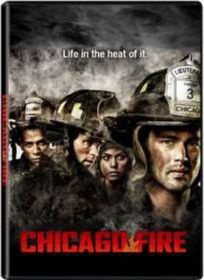 Chicago Fire Season 1 (DVD)