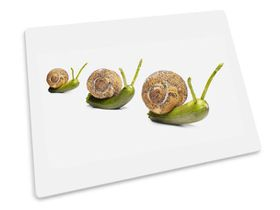 Joseph Joseph - Worktop Saver Glass Chopping Board - Snails Design