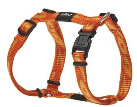 Rogz - Small Alpinist Kilimanjaro Dog H-Harness - 1.1cm Orange