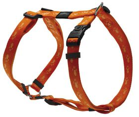Rogz - Alpinist Everest Dog H-Harness - Extra-Large - 2.5cm Orange