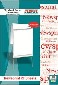 Parrot Flipchart Paper - Newsprint 20 Sheets