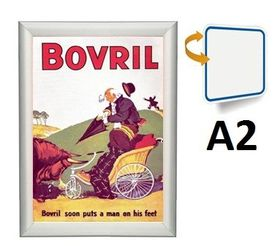 Parrot Poster Frame A2 Double Sided Mitred - Light Grey