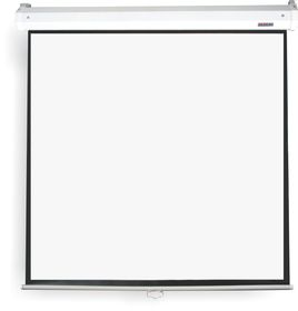 Parrot Pulldown Projector Screen - 2440 x 2440mm