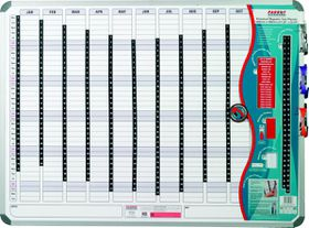 Parrot Perpetual Year Planner - 1200mm x 900mm