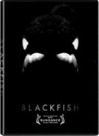 Blackfish (DVD)