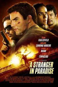 Stranger In Paradise (DVD)