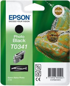 Epson Singlepack Black T0341 Ultra Chrome