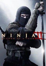 Ninja 2: Shadow of a Tear (DVD)