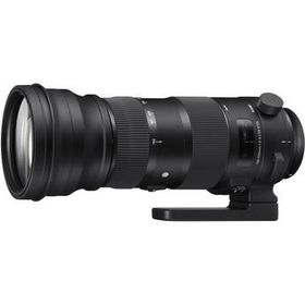Sigma 150-600mm f5-6.3 DG OS HSM Sport Lens
