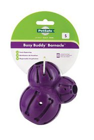 Pet Safe - Busy Buddy Barnacle - Small