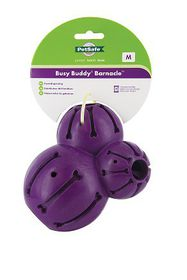 Pet Safe - Busy Buddy Barnacle - Medium