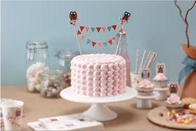 Ginger Ray - Cake Bunting