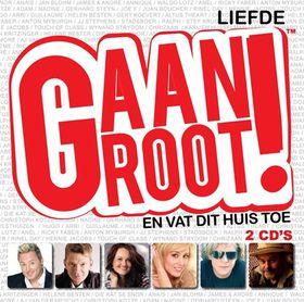 Liefde Gaan Groot 3 - Various Artists (CD)