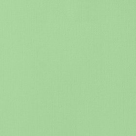 American Crafts Cardstock 12x12 Textured - Cabbage