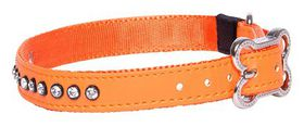 Rogz - 16mm Luna Pin Buckle Dog Collar - Orange