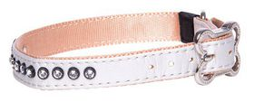 Rogz Lapz 16mm Medium Luna Pin Buckle Dog Collar - Ivory