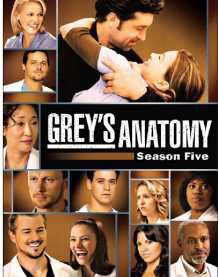 Grey's Anatomy Complete Season 5 (DVD)