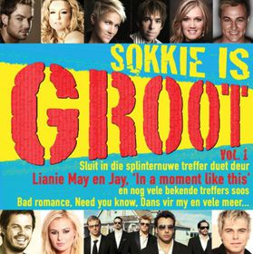 Sokkie Is Groot - Various Artists (CD)