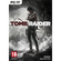 Super Hits: Tomb Raider (2013) (PC)