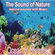 Sounds Of Nature - Ocean Of Dreams - Various Artists (CD)