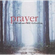 Prayer - A Windham Hill Collection - Various Artists (CD)