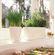 Lechuza - Delta 10 Table Planters - White Glossy