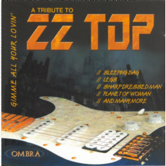 Tribute To Zz Top - Tribute To ZZ Top (CD)