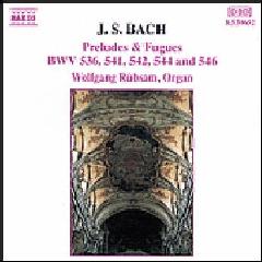 Wolfgang Rubsam - Preludes & Fugues (CD)