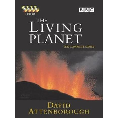 Living Planet - (Import DVD)