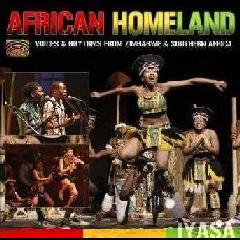African Homeland - Voices And Rhythms Fr - Various Artists (CD)
