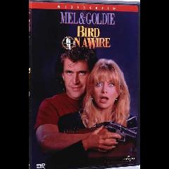 Bird on a Wire - (Australian Import DVD)