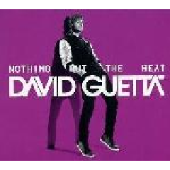 Guetta David - Nothing But The Beat (CD)