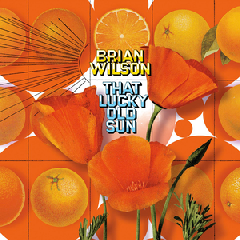 Wilson Brian - That Lucky Old Sun (CD)