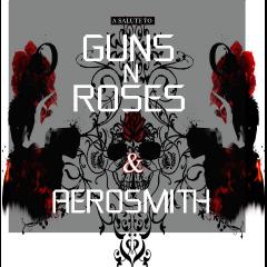 A Salute To Gun 'n Roses & Aerosmith - Various Artists (CD)