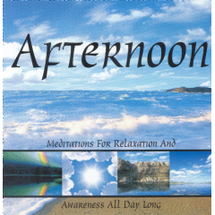Afternoon - Various Artists (CD)