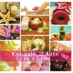 A Day At The Spa - Various Artists (CD)