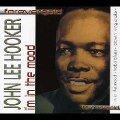 Hooker, John Lee - John Lee Hooker (CD)