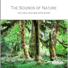 Sounds Of Nature - Mysterious Rainforest - Various Artists (CD)