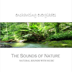 Sounds Of Nature - Enchanting Everglades - Various Artists (CD)