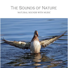 Sounds Of Nature - Loonscape - Various Artists (CD)